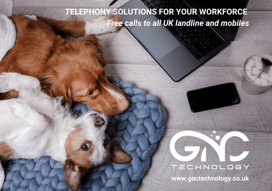 Telephony solutions for the workforce