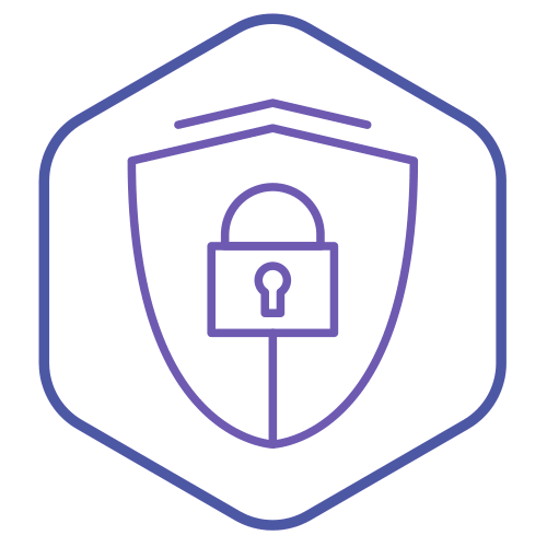 Cyber security icon FREE vpNS